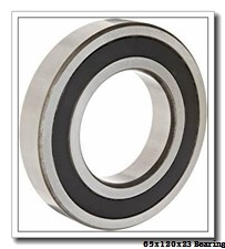 65 mm x 120 mm x 23 mm  NSK BL 213 ZZ deep groove ball bearings