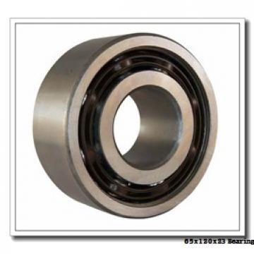 65 mm x 120 mm x 23 mm  NACHI NU 213 cylindrical roller bearings
