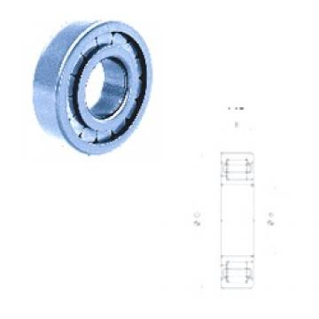 120 mm x 180 mm x 28 mm  Fersa NJ1024FM cylindrical roller bearings