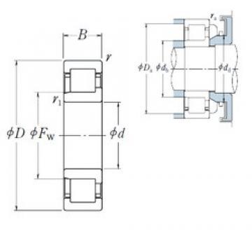 65 mm x 120 mm x 23 mm  NSK NJ 213 EW cylindrical roller bearings