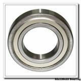 65 mm x 120 mm x 23 mm  NACHI NJ 213 cylindrical roller bearings