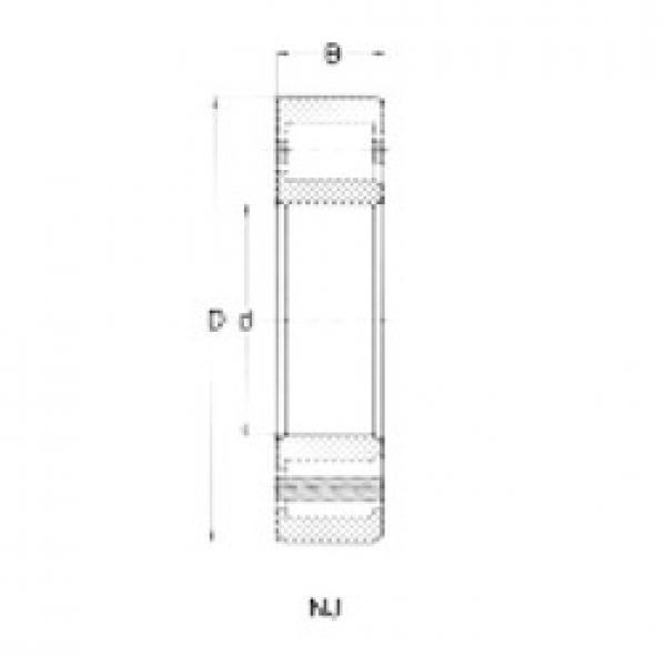 65 mm x 120 mm x 23 mm  Loyal NJ213 cylindrical roller bearings #3 image
