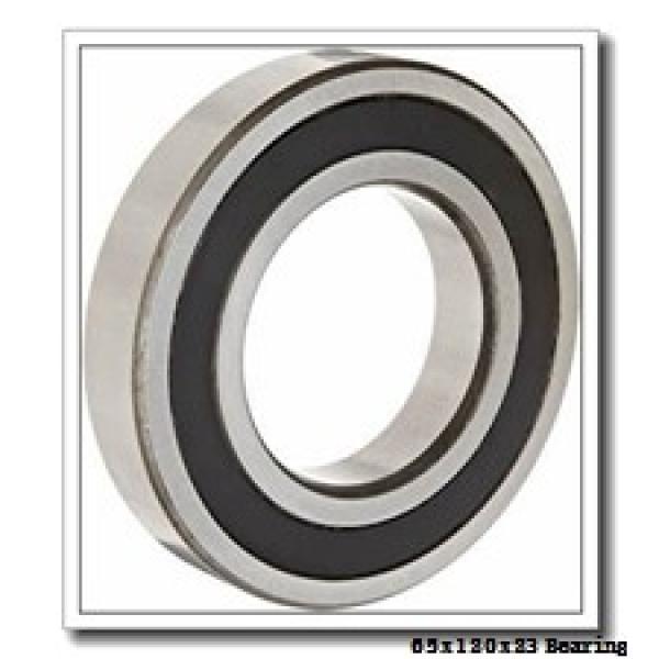 65 mm x 120 mm x 23 mm  NKE NJ213-E-M6 cylindrical roller bearings #1 image