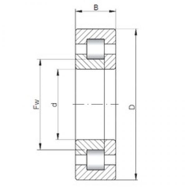 50 mm x 110 mm x 27 mm  ISO NUP310 cylindrical roller bearings #3 image
