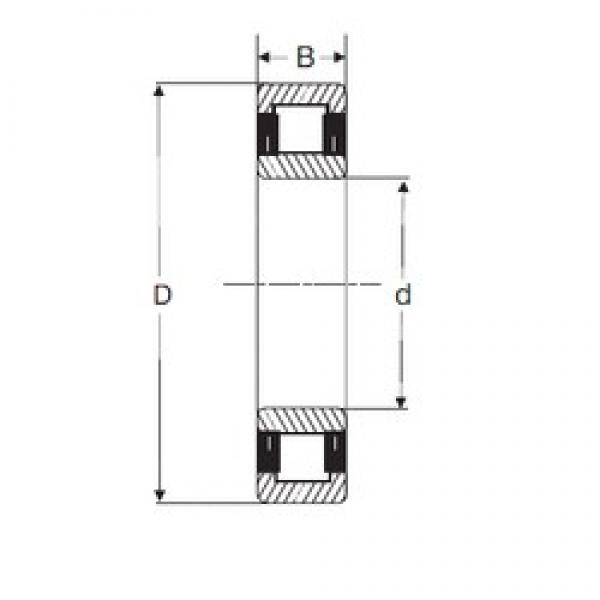 50 mm x 110 mm x 27 mm  SIGMA NU 310 cylindrical roller bearings #3 image