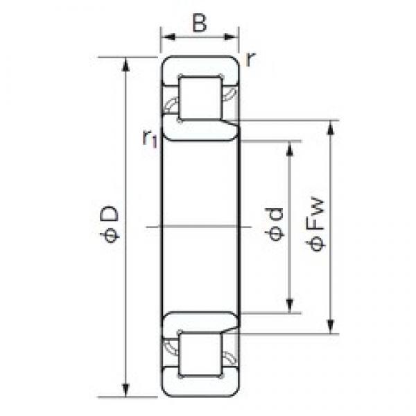 65 mm x 120 mm x 23 mm  NACHI NJ 213 cylindrical roller bearings #3 image