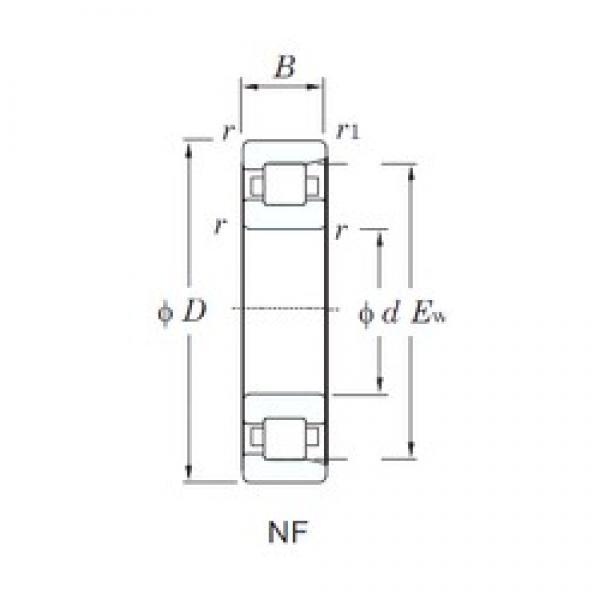 170 mm x 310 mm x 52 mm  KOYO NF234 cylindrical roller bearings #3 image
