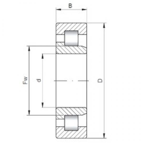 15 mm x 42 mm x 13 mm  Loyal NJ302 E cylindrical roller bearings #3 image